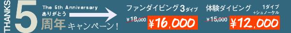 限定キャンペーン第4弾