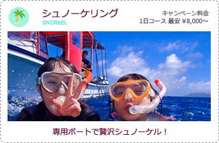 石垣島シュノーケリング