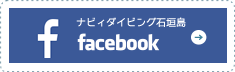 フェイスブックムダイビング