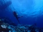 透明度30mの青い海!!