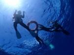 透明度30mの青い海で、ファンダイブ&シュノーケリング!!